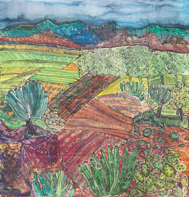 Oaxaca landscape close up copy